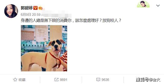 台媒曝郭碧婷怀孕6月!肚大如箩孕味十足,结婚证书她却还未签字